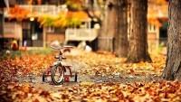 «Октябрь в председательском кресле»