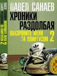 Отзыв «Хроники Раздолбая» Павел Санаев
