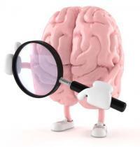 Мозг выбирает детектив.