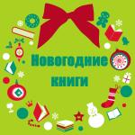 Источник праздника – новогодние книги!