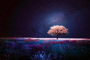 читать рассказ «Одна-единственная ночь» Рэй Брэдбери